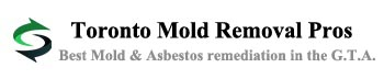 Mold & Asbestos Removal in Toronto